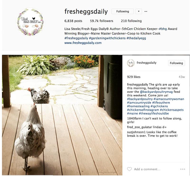 top-instagram-accounts6.jpg